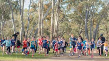 Bendigo Harrier's invitation Run 2015 Sport